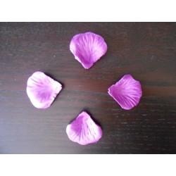 pétale de rose violette