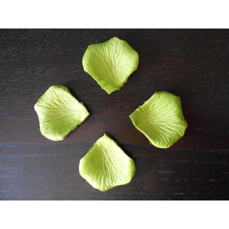 acheter 100 p tales de rose artificielle vert anis sur hello pompon. Black Bedroom Furniture Sets. Home Design Ideas