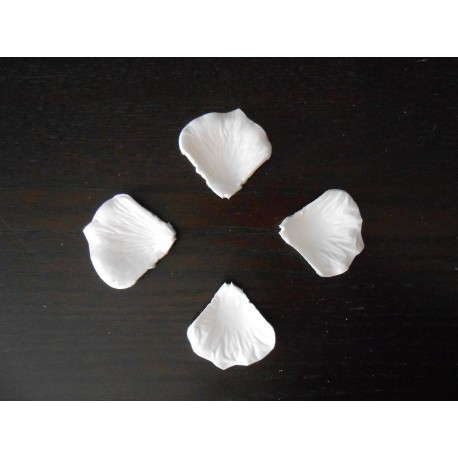 pétale rose blanche