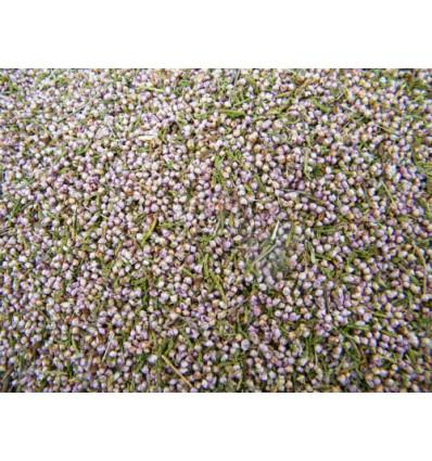 Confettis biodégradables fleurs séchées graines de bruyère