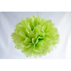 Pompon papier vert anis 25 cm
