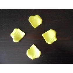 pétale de rose jaune fluo