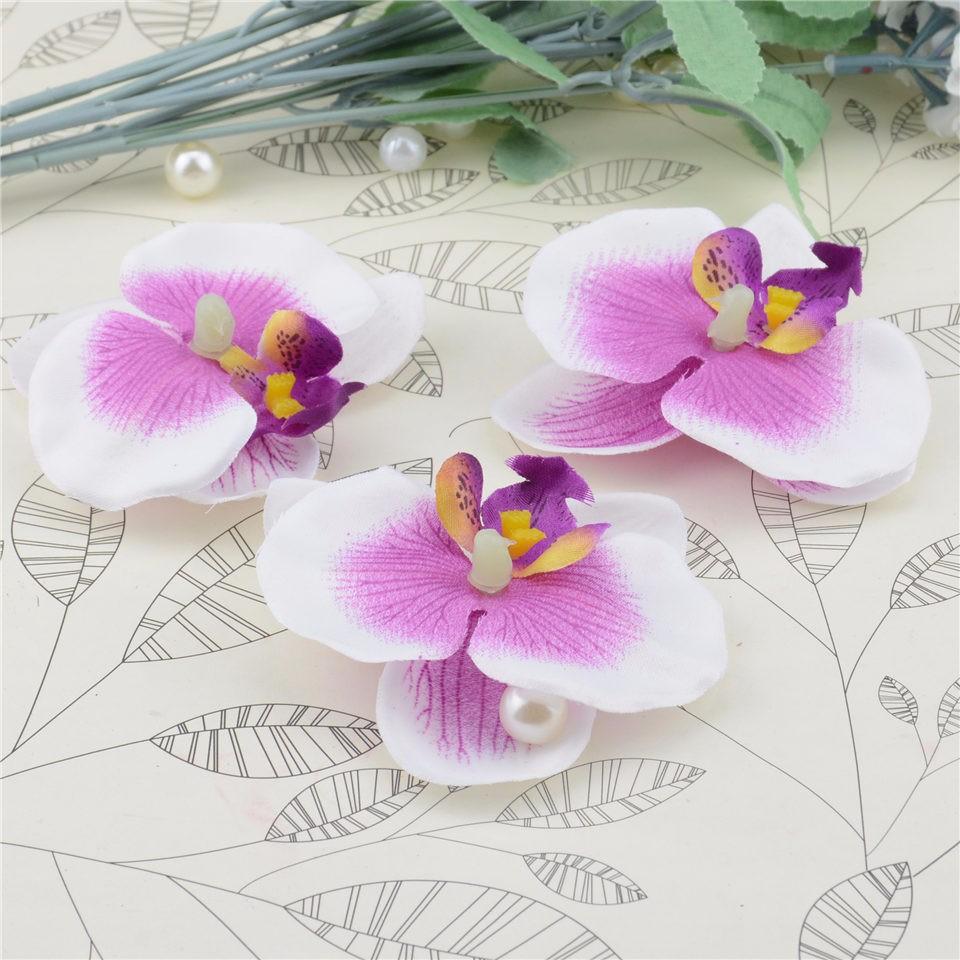 orchidées violet