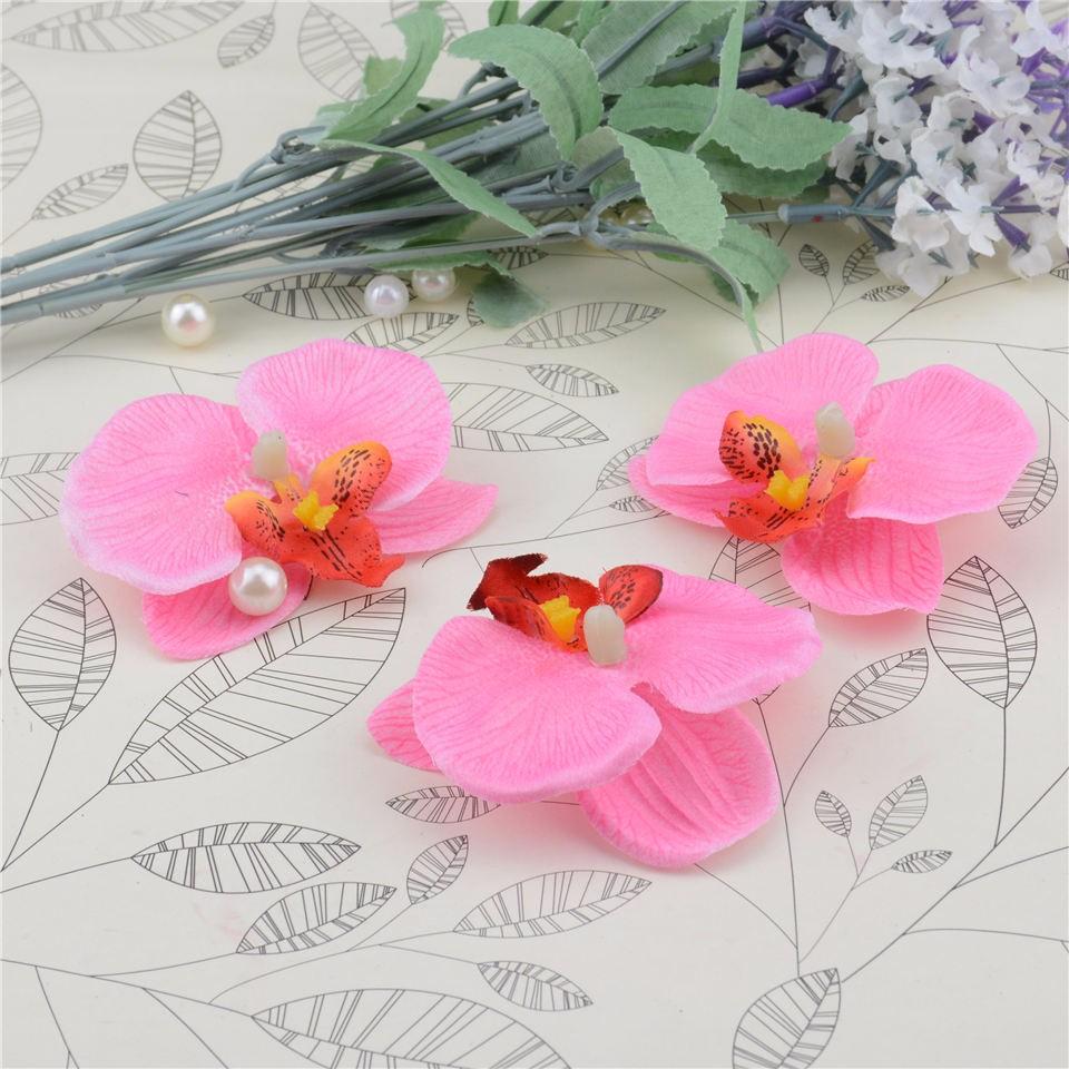 orchidées rose doux